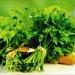 Един от най-мощните билкови лекове – магданоз